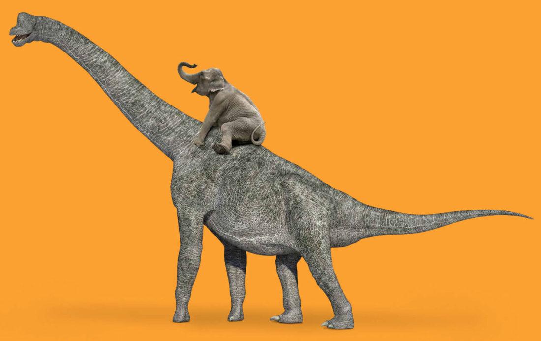elephant riding a brontosaurus' back